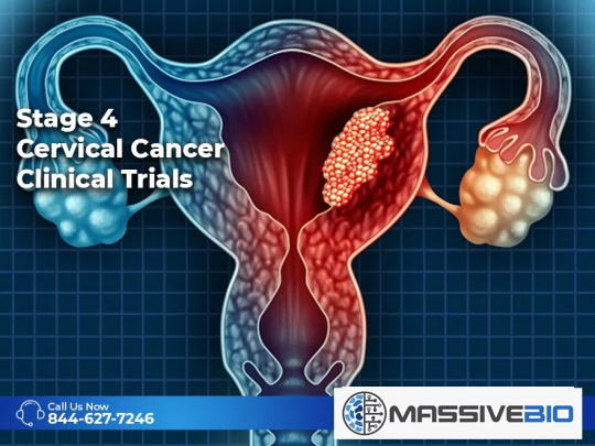 Stage 4 Cervical Cancer Clinical Trials