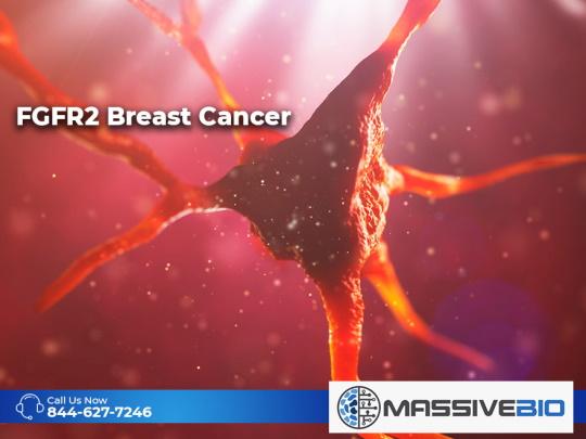 FGFR2 Breast Cancer