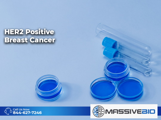 HER2 Positive Breast Cancer