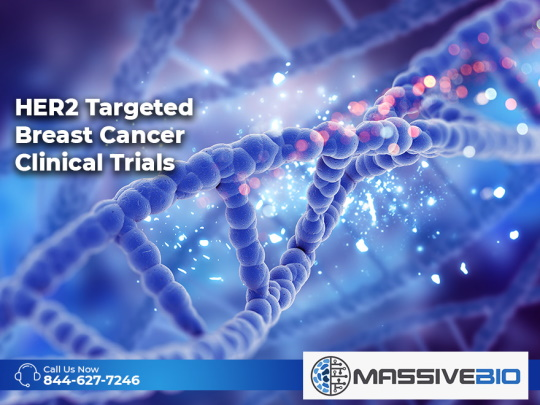 HER2 Targeted Breast Cancer Clinical Trials