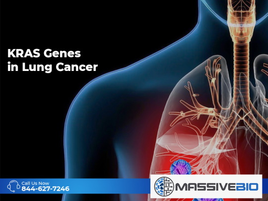 KRAS Genes in Lung Cancer