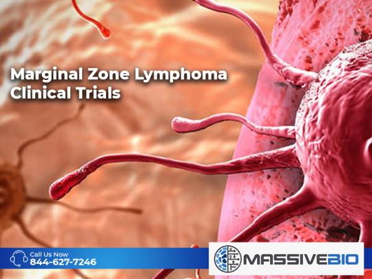 Marginal Zone Lymphoma Clinical Trials