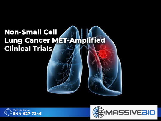 Non-Small Cell Lung Cancer MET-Amplified Clinical Trials