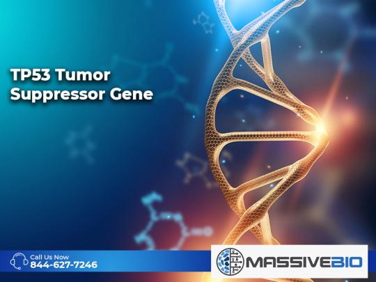 TP53 Tumor Suppressor Gene