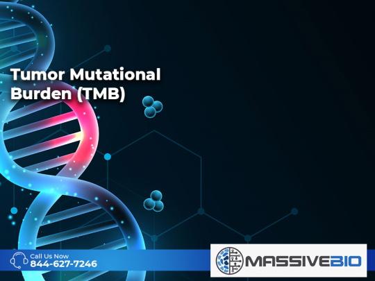 Tumor Mutational Burden (TMB)